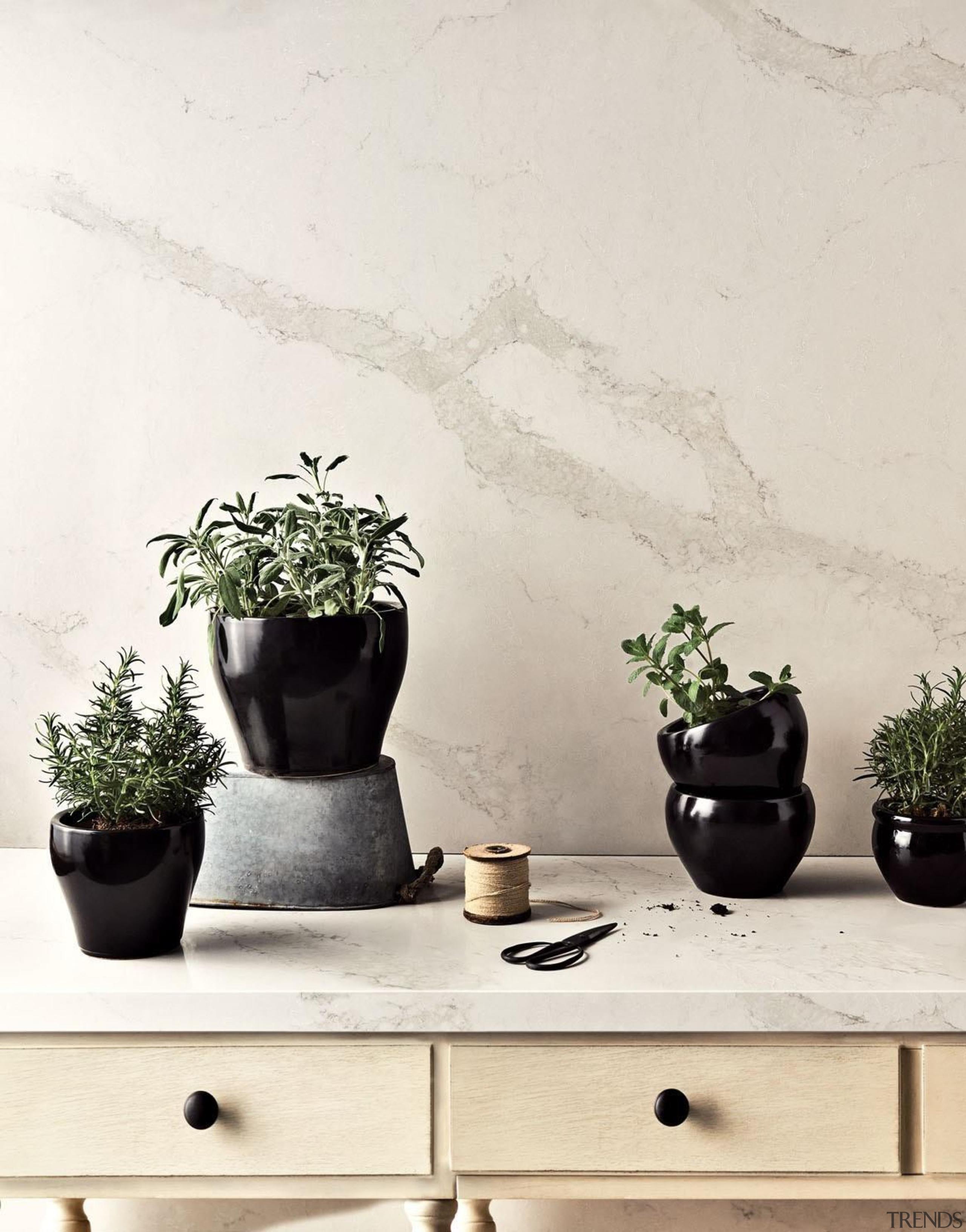 As Caesarstone's interpretation of natural Calacatta marble, Calacatta ceramic, flowerpot, houseplant, interior design, plant, product design, still life photography, table, vase, wall, white