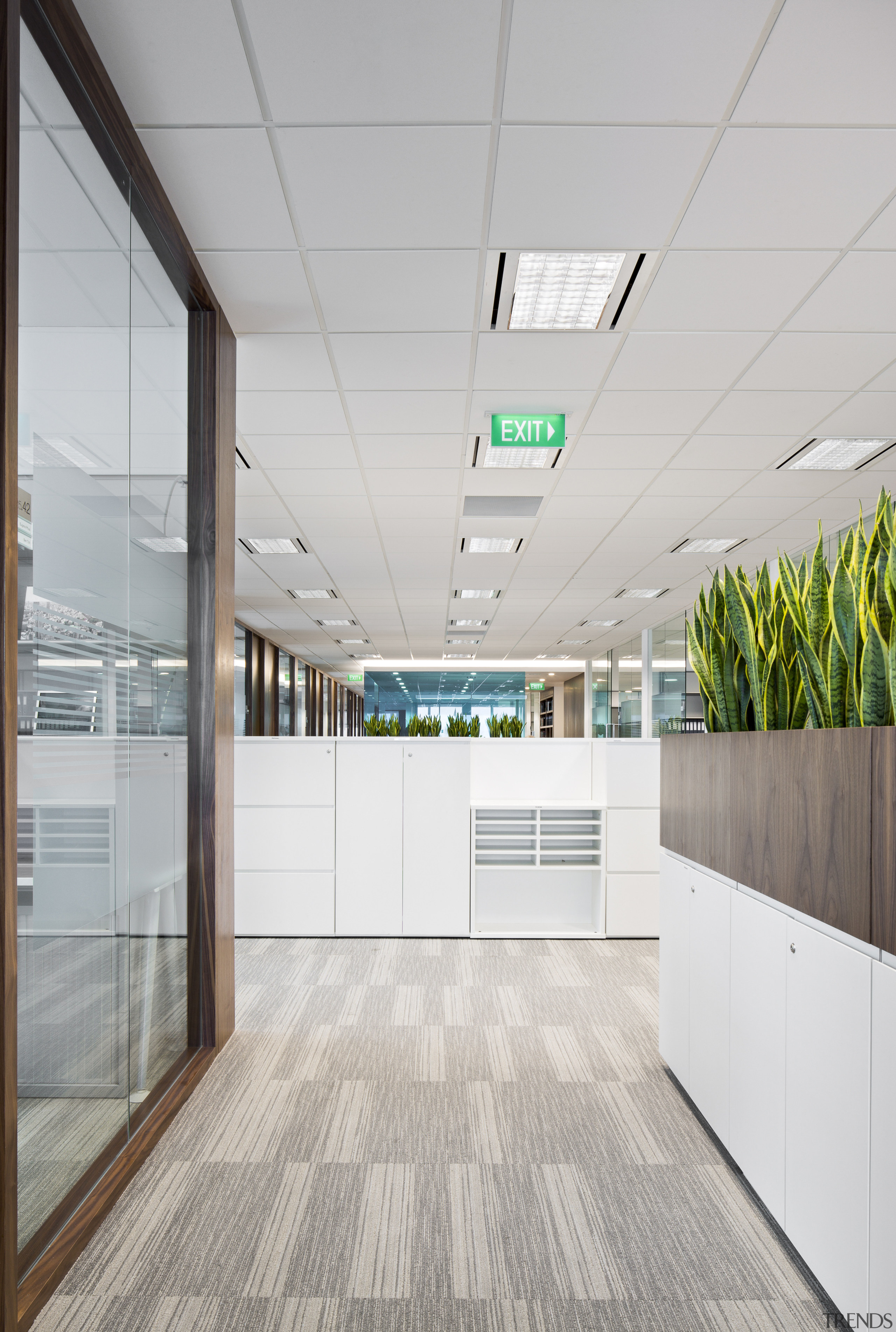With its glossy white finishes and bold colour architecture, ceiling, daylighting, floor, interior design, office, wall, gray