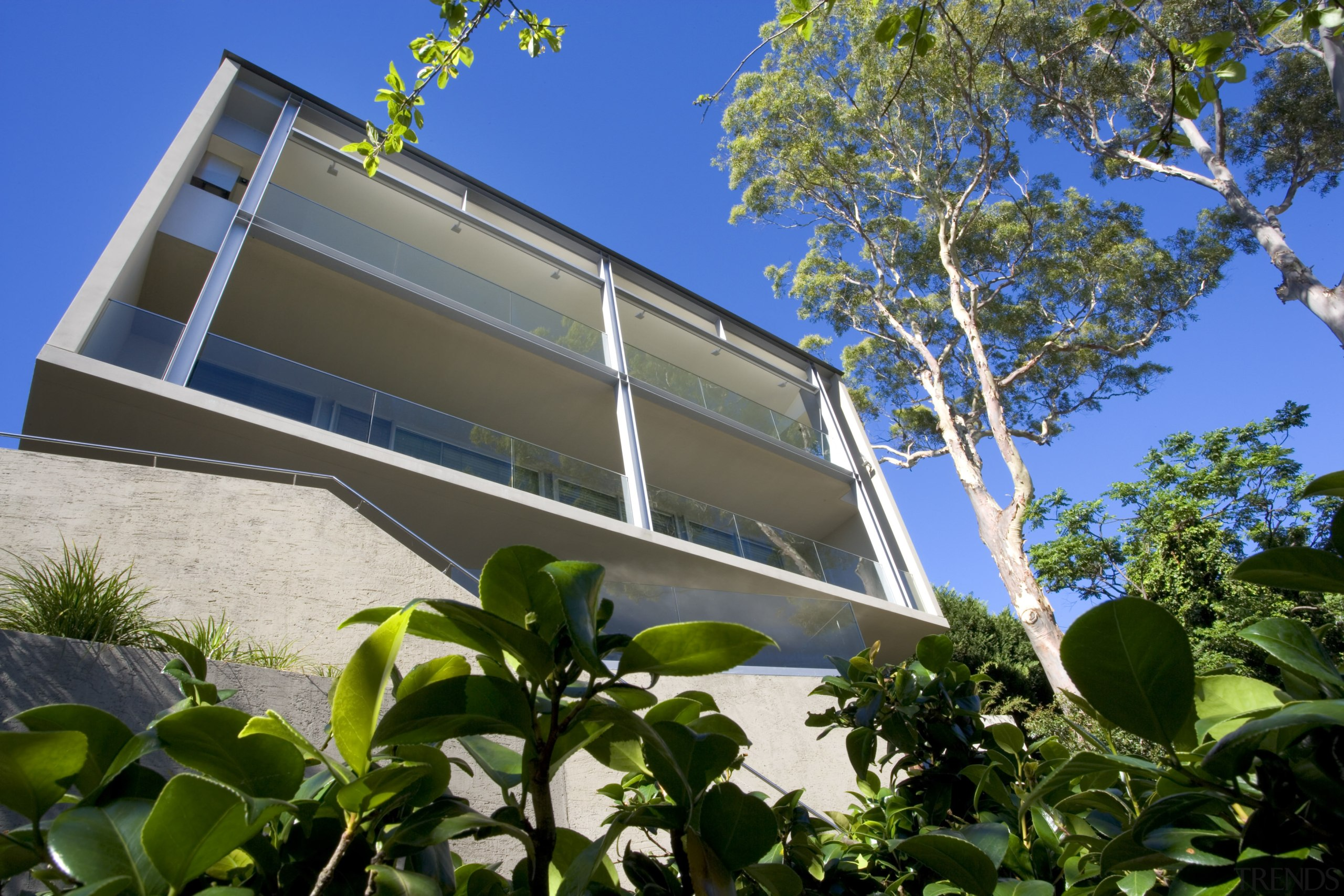This home is built down a steep cliff, architecture, building, facade, home, house, plant, property, real estate, residential area, tree, blue