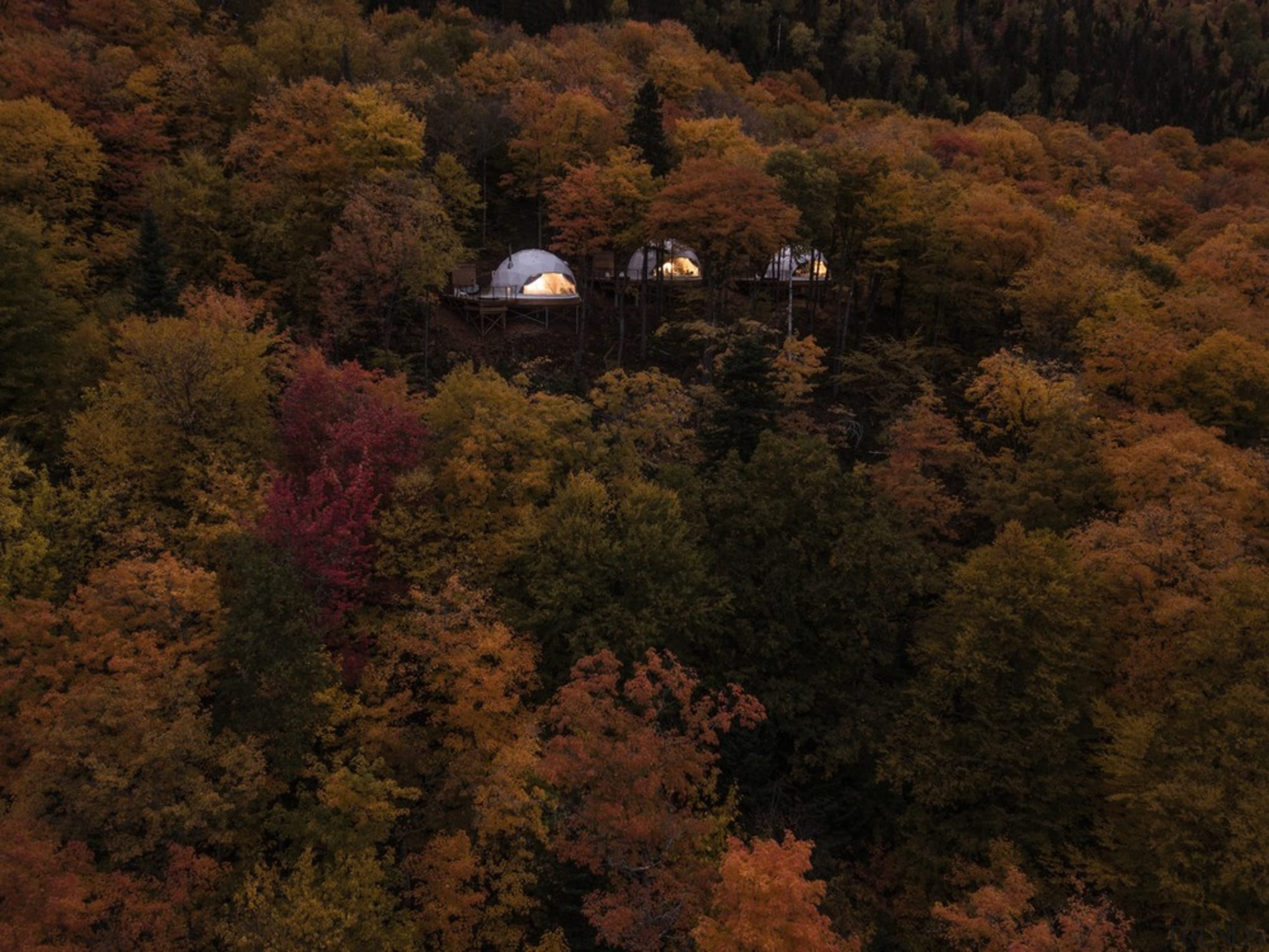 Dome 3 - aerial photography | autumn | aerial photography, autumn, biome, deciduous, forest, hill, landscape, leaf, morning, nature, plant, rural area, sky, temperate broadleaf and mixed forest, tree, wilderness, woody plant, brown, black