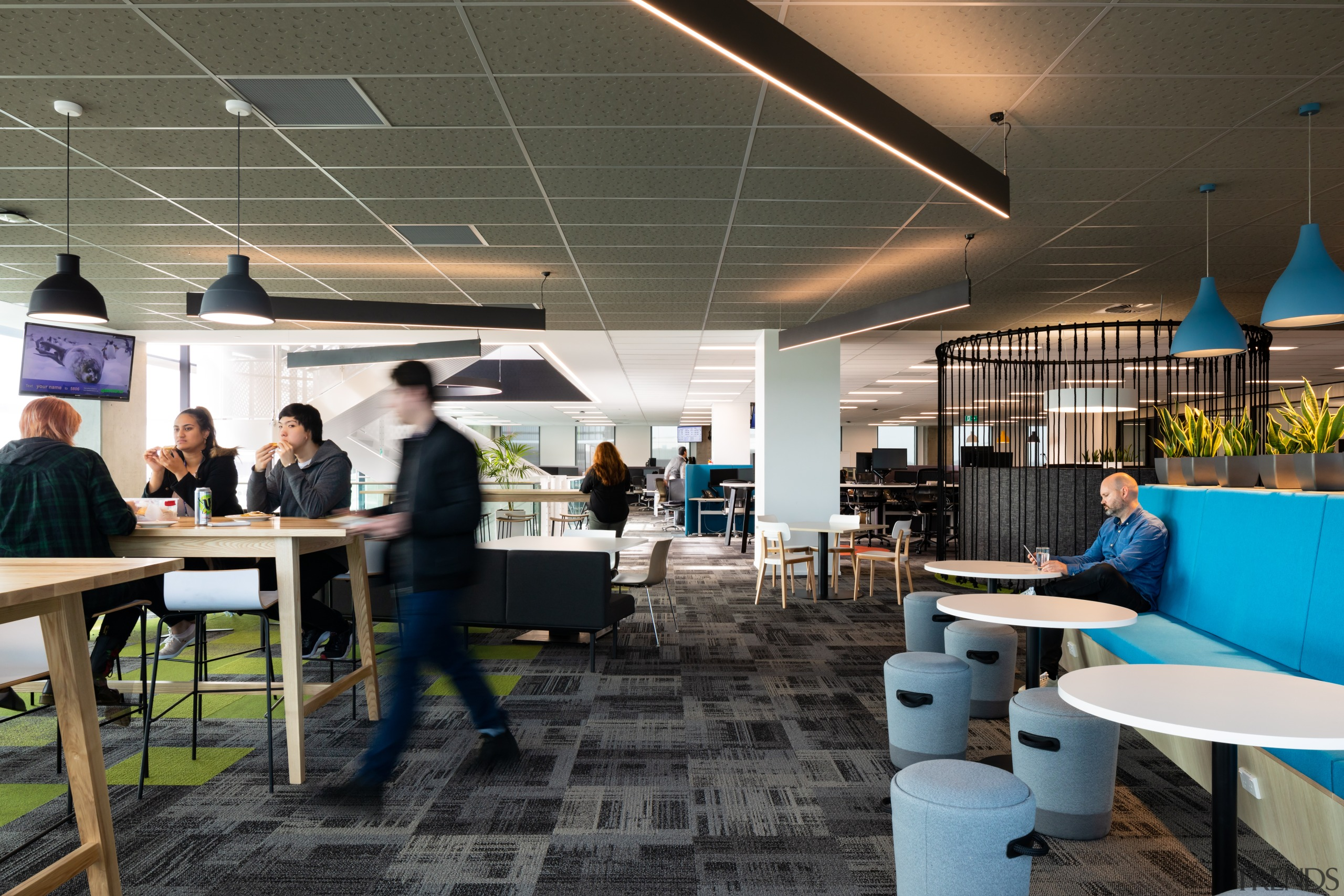 Splashes of colour reinforce brand colours on the architecture, building, design, flooring, furniture, interior design, office, IAG fit-out,  No 1 Sylvia Park, wooden bench tables