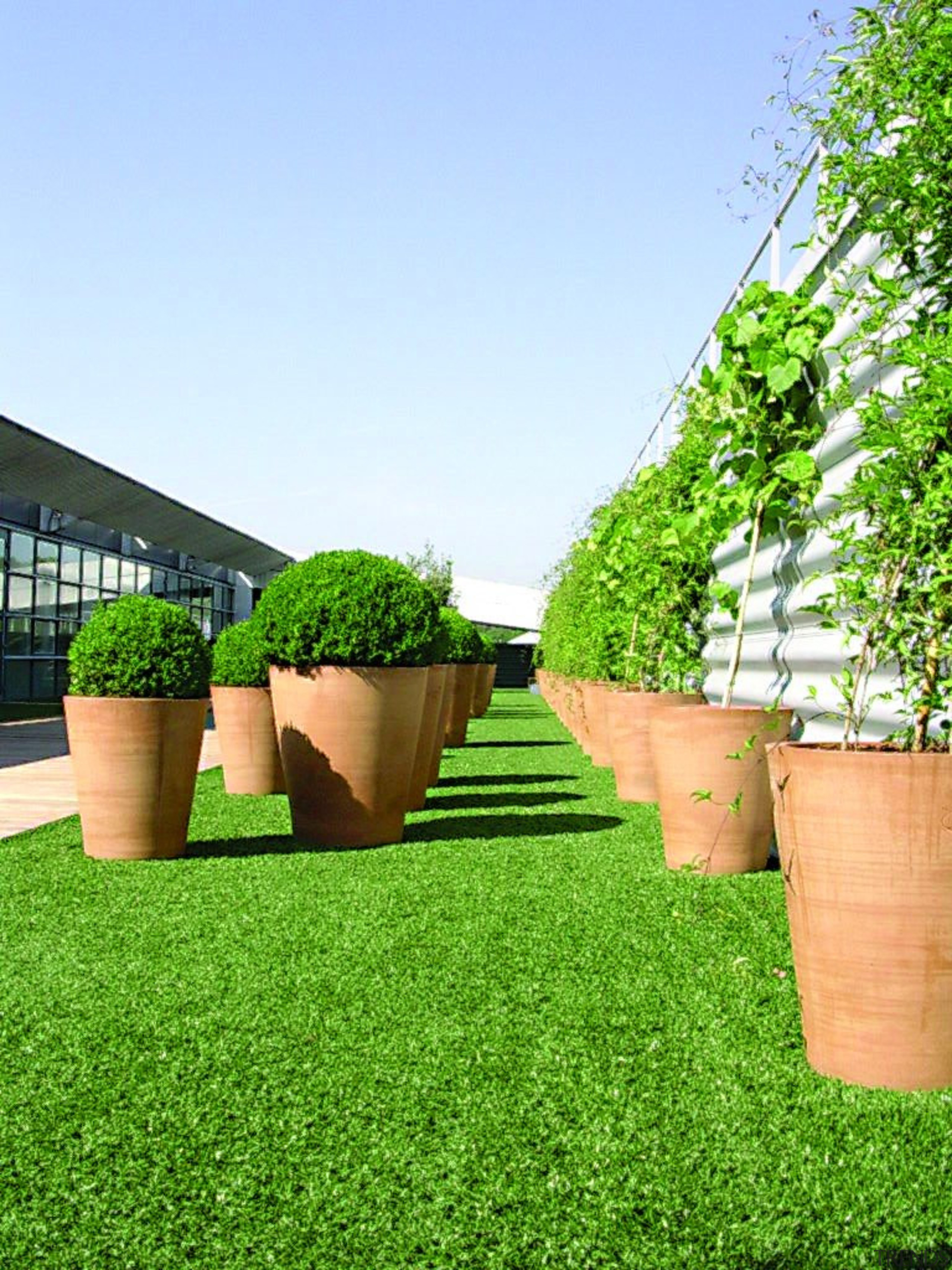 Commercial landscape - artificial turf | backyard | artificial turf, backyard, flowerpot, garden, grass, grass family, landscaping, lawn, plant, shrub, tree, yard, green
