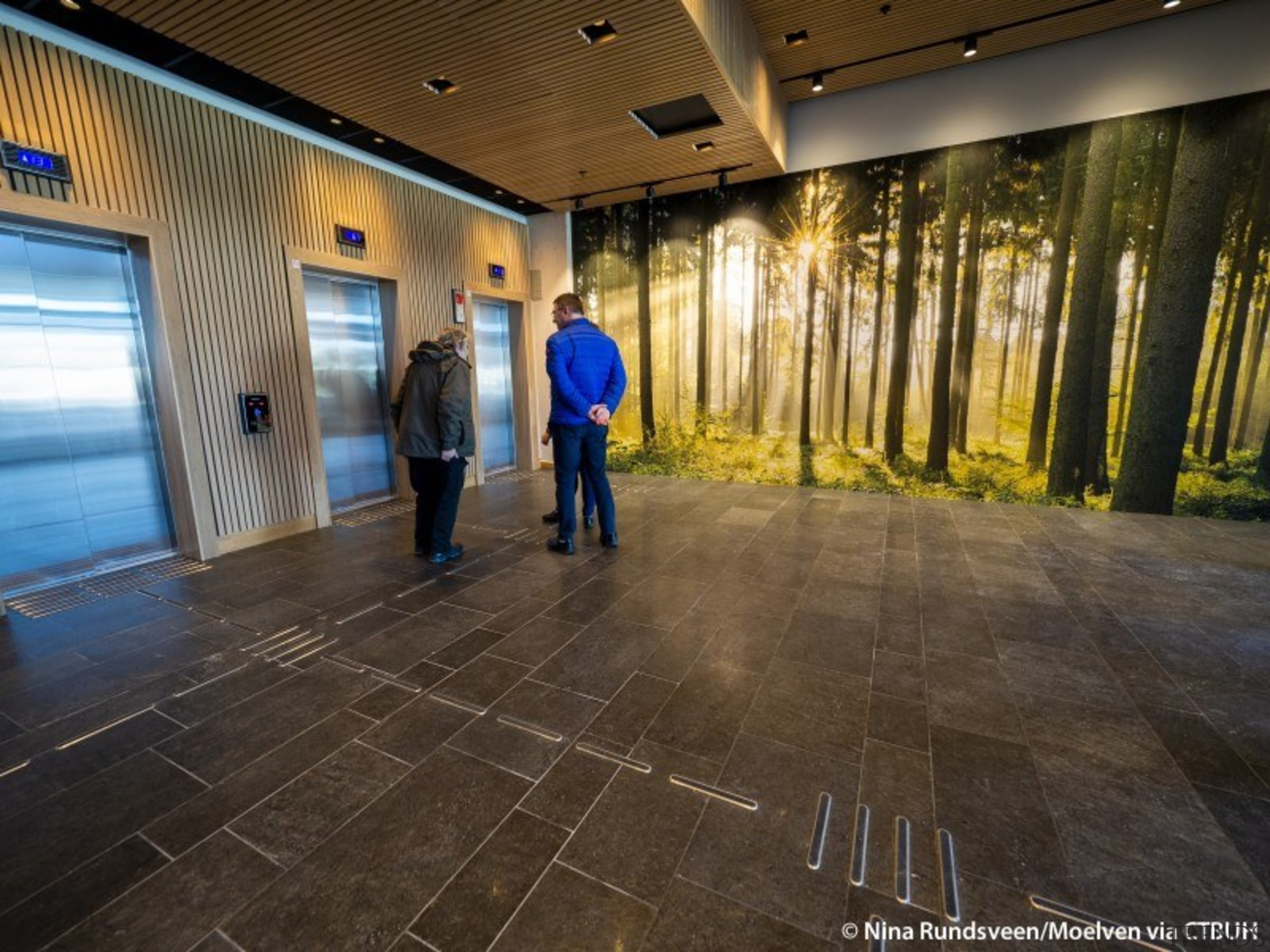 An appropriate ground-level mural in the wood-built building. architecture, building, floor, flooring, lobby, photography, brown, black