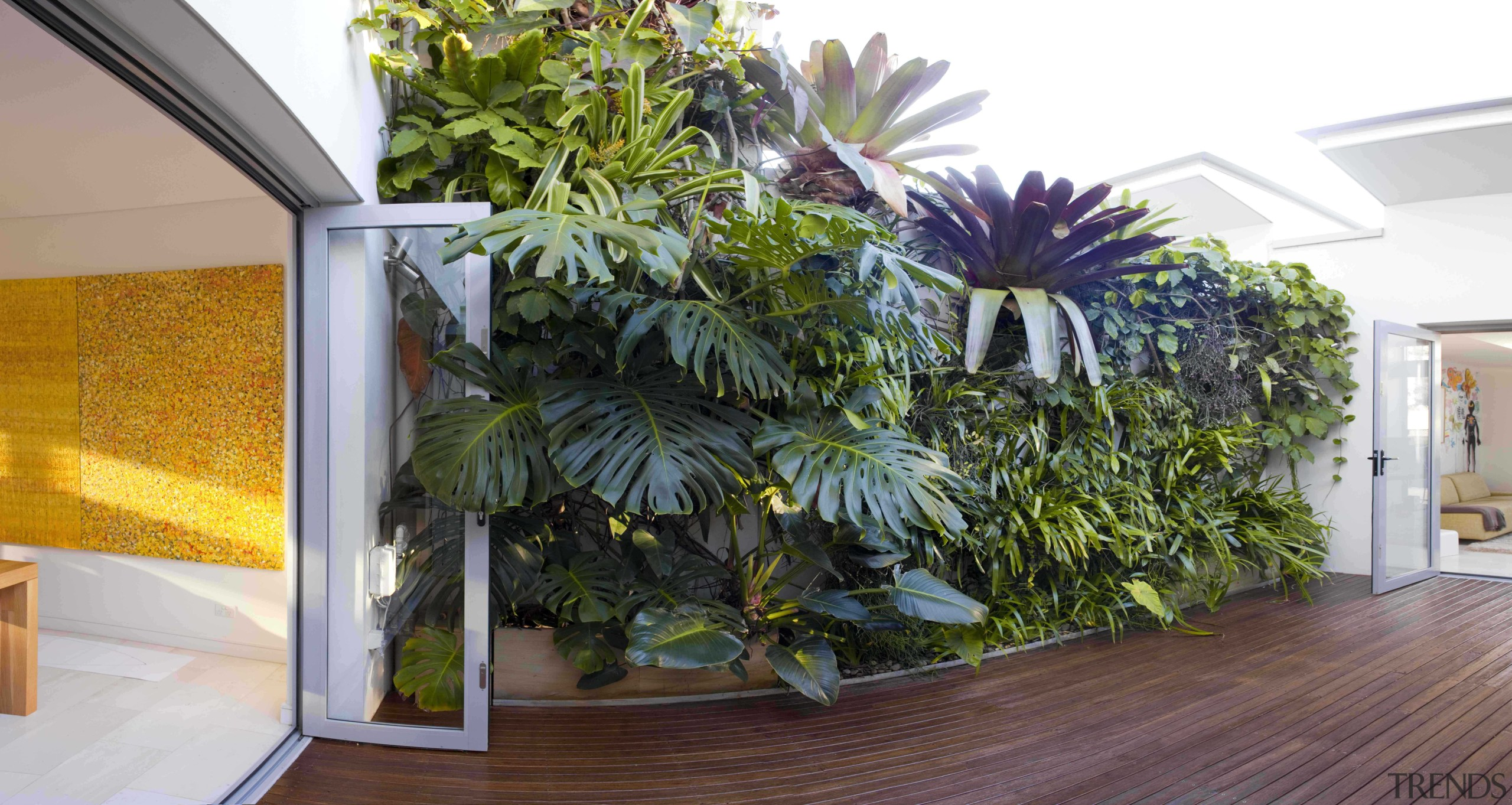 What you need to know about greening your botany, flower, home, house, houseplant, plant, room