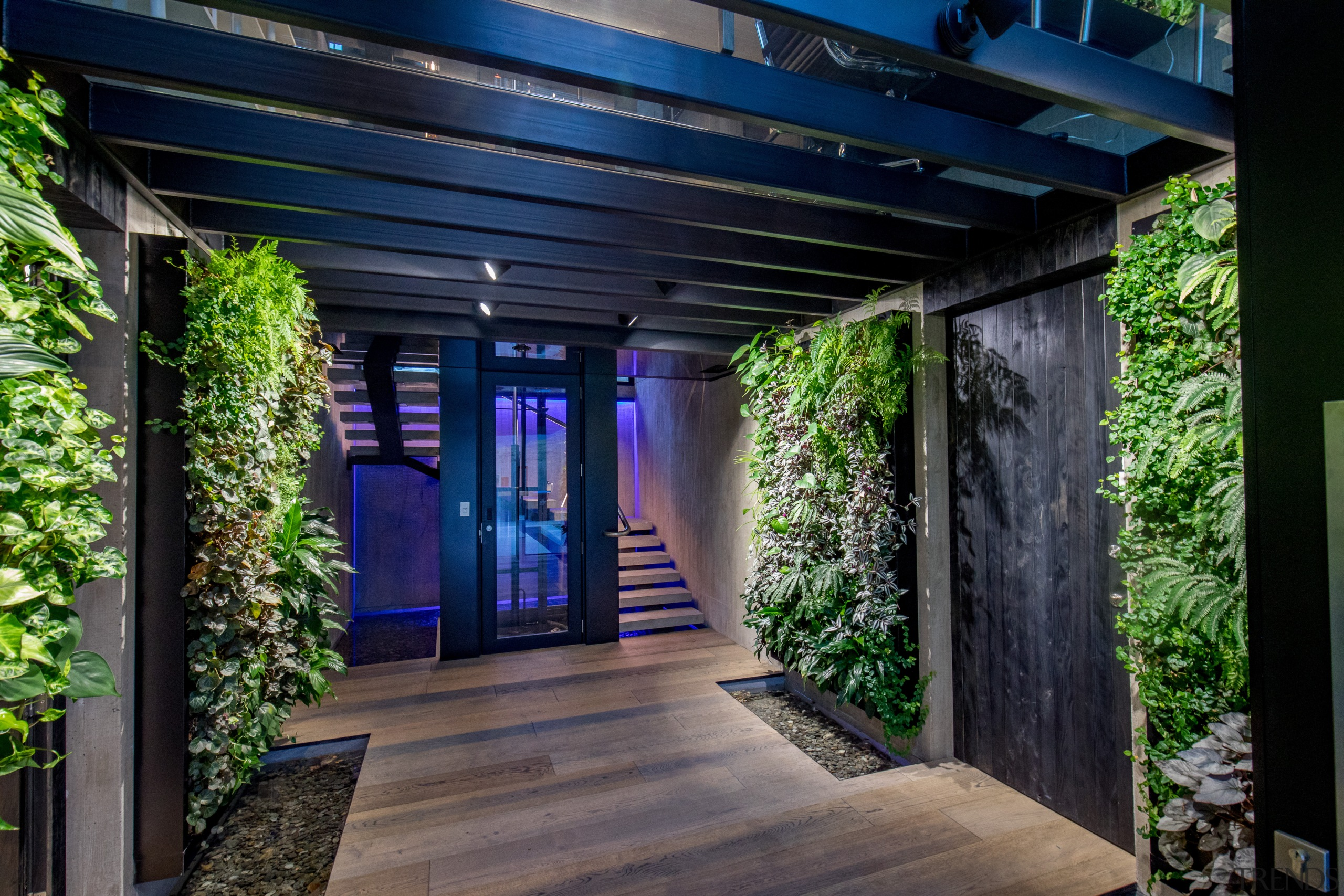 ​​​​​​​Vertical garden walls feature scented plantings in this architecture, home, house, lighting, outdoor,  black, Gary Todd Architurecture, vertical gardens