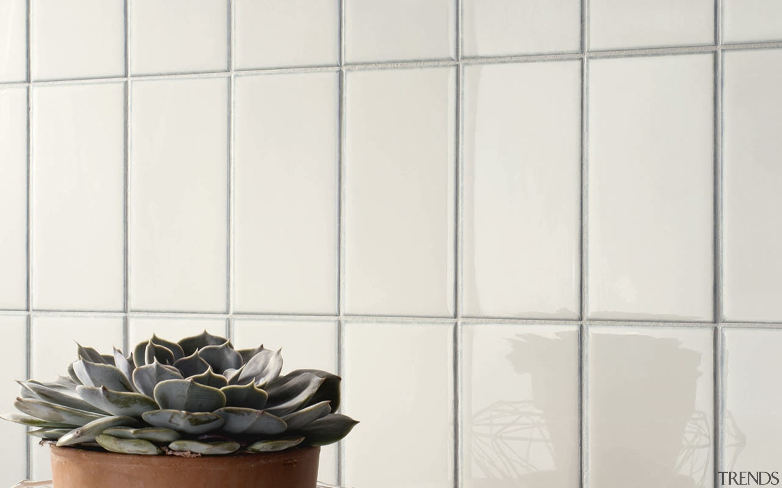 LOL White 100x200 - LOL White 100x200 - floor, flooring, flowerpot, interior design, shade, tile, wall, window, white