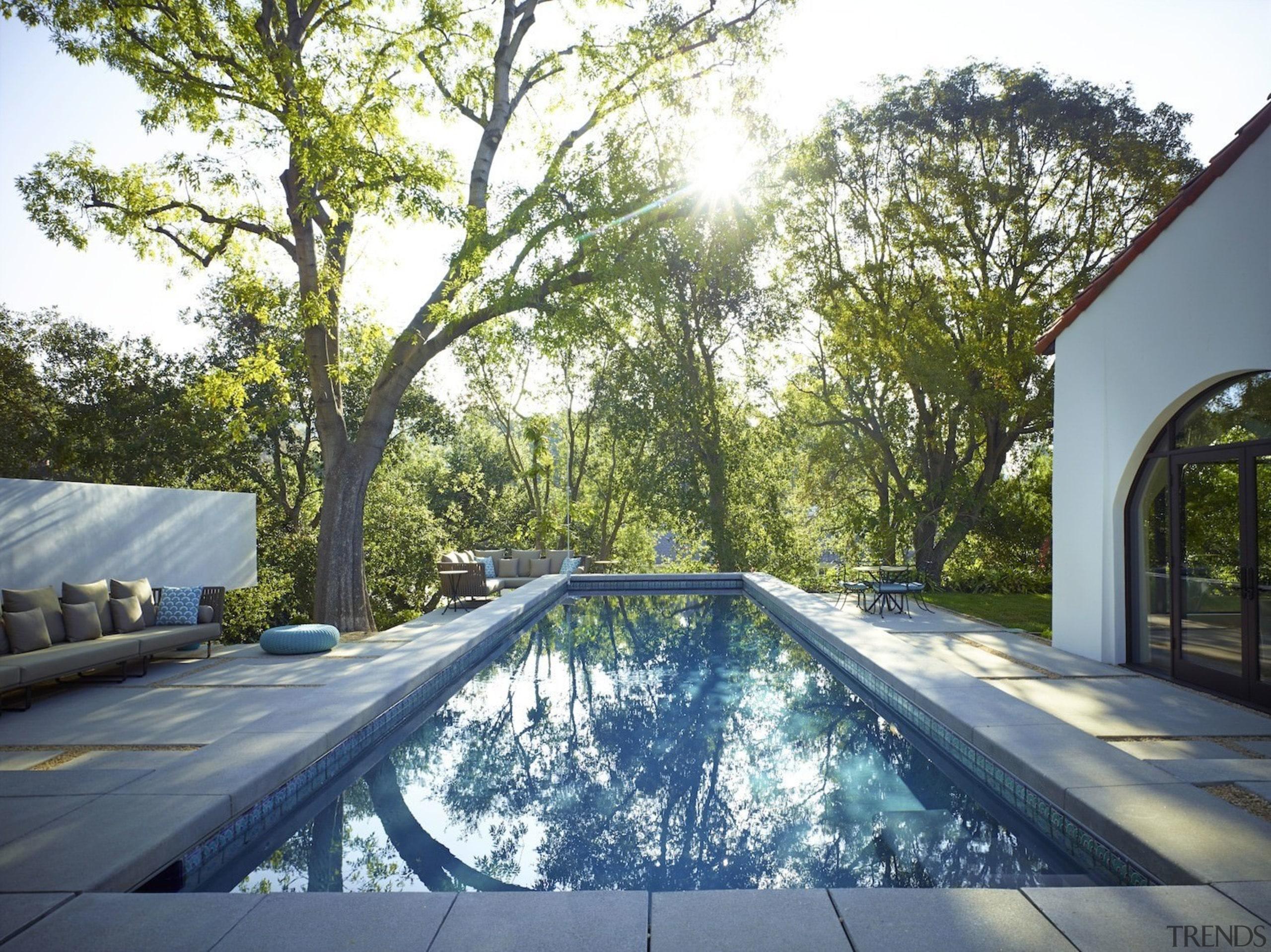 Trees throw shadows down onto the pool area architecture, backyard, estate, home, house, plant, property, real estate, residential area, swimming pool, tree, white