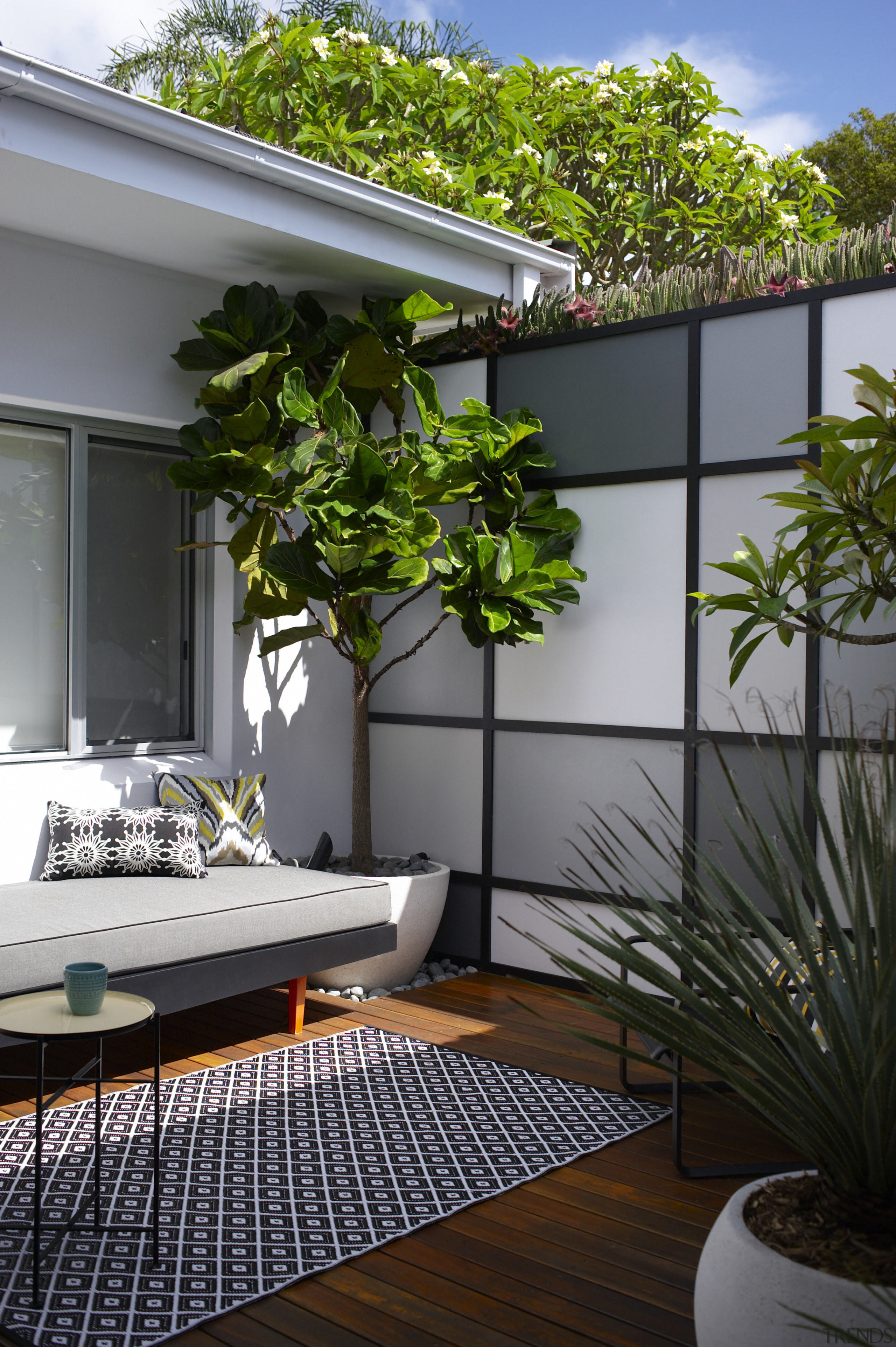 The extensively renovated house has an internal courtyard architecture, arecales, balcony, courtyard, home, house, houseplant, interior design, outdoor structure, plant, property, real estate, tree, window, gray