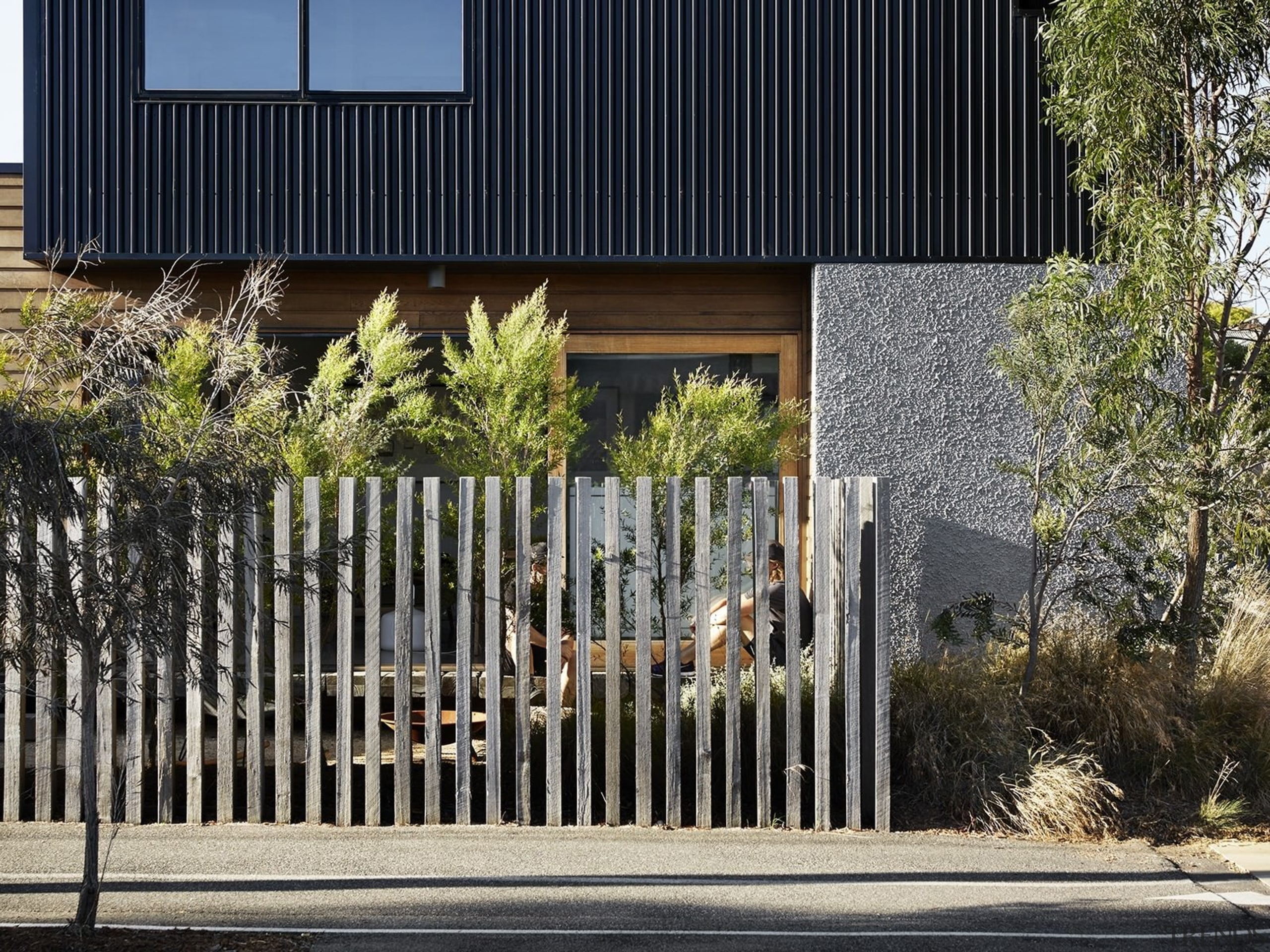 Architect: Liam WallisPhotography by Tess Kelly architecture, building, facade, fence, gate, home, house, iron, real estate, residential area, siding, tree, black, gray