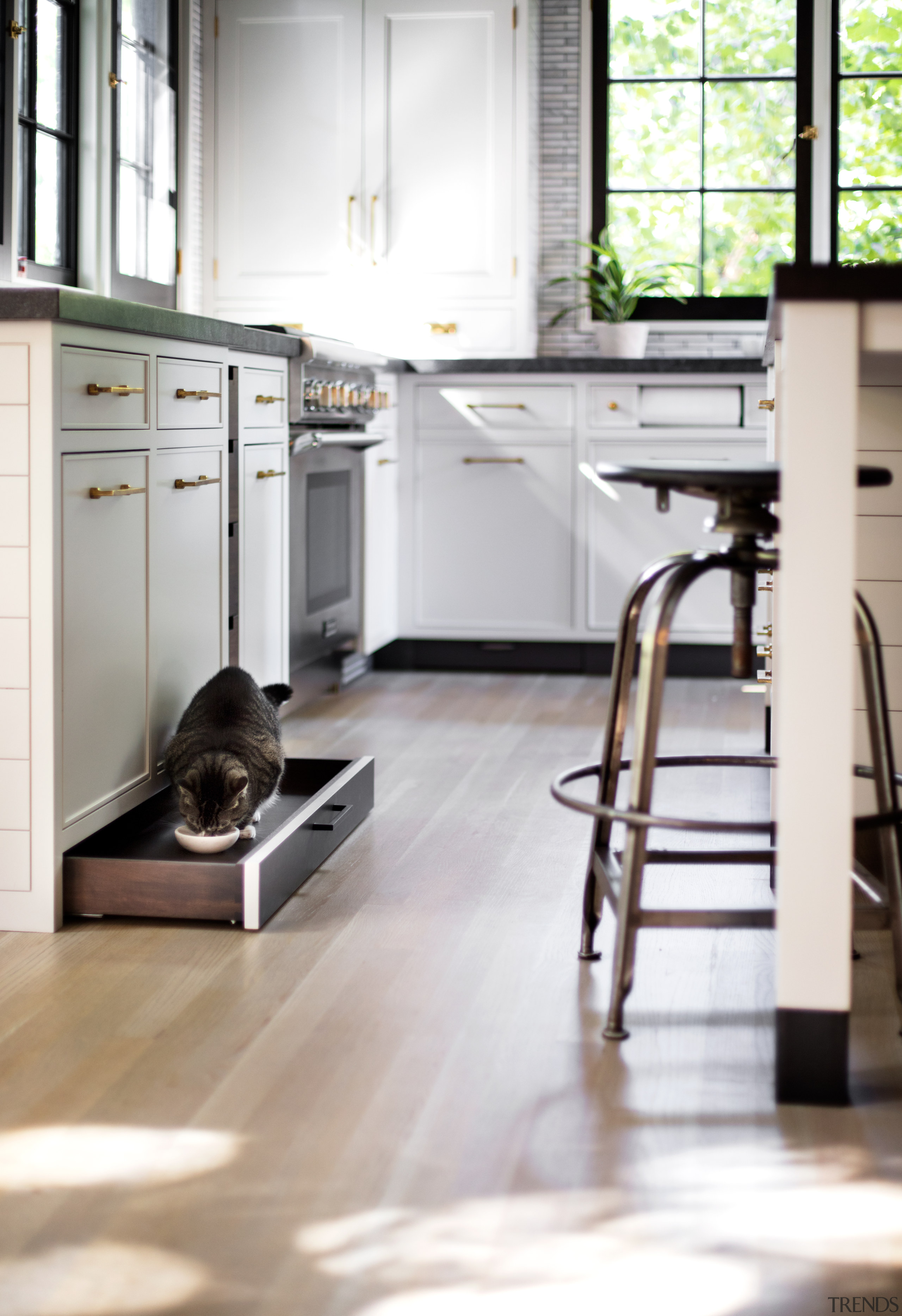 Not a cat door, but a cat drawer kitchen cabinetry, countertop, floor, flooring, hardwood, home, interior design, kitchen, timber flooring, cat drawer, Studio Dearborn