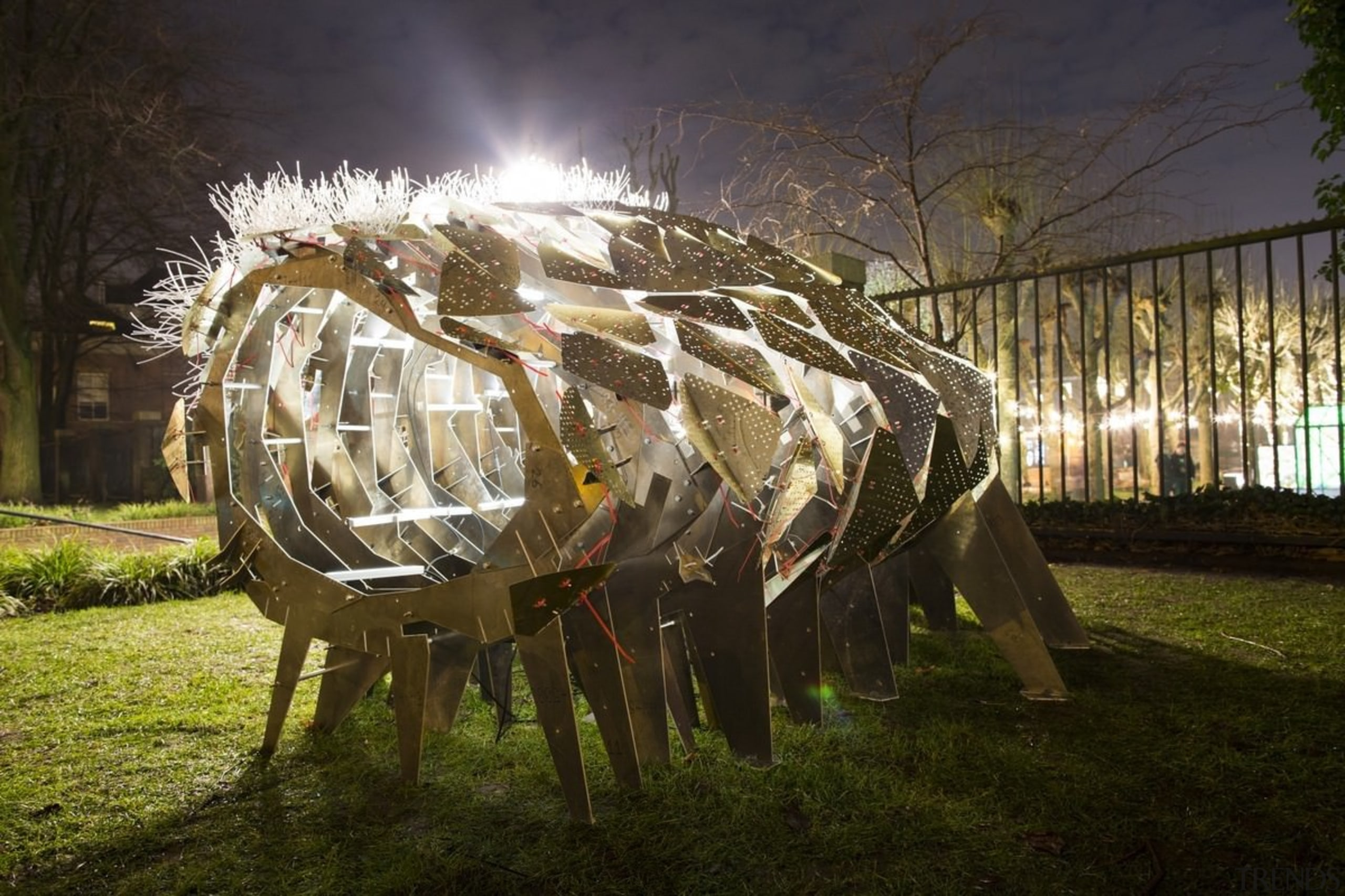 The Flowering Phantasm by Clay Odom - The grass, light, lighting, night, plant, tree, brown