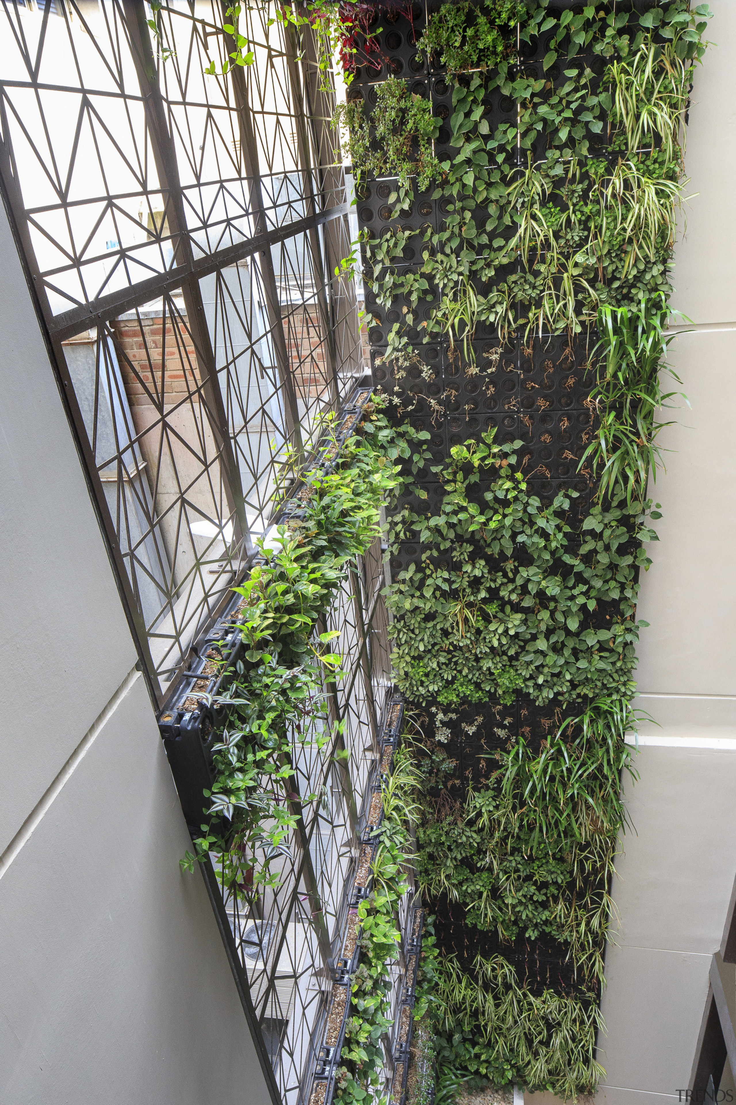 A tessellated motif seen in the facade reappears grass, house, plant, tree, wall, window, gray