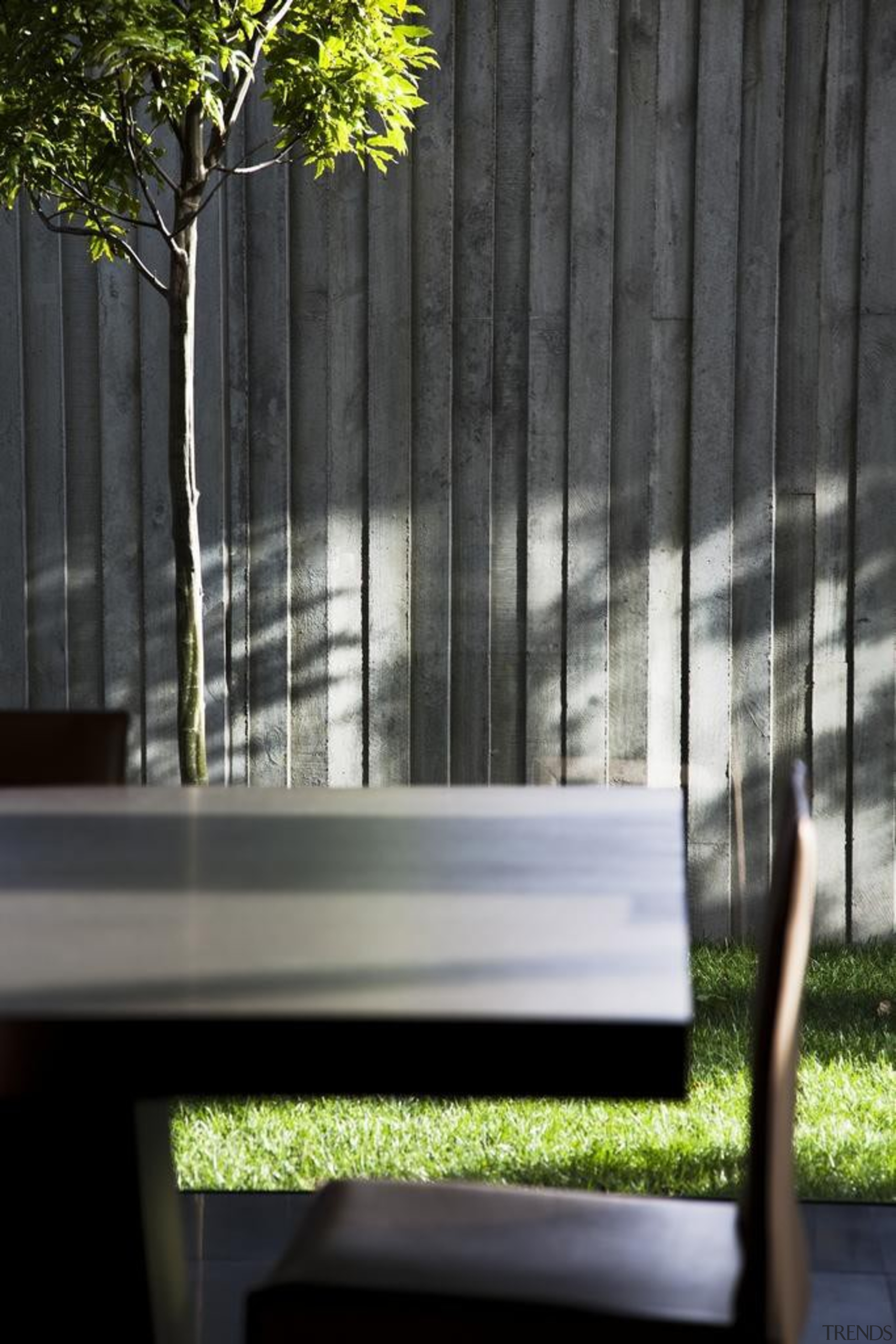 Remuera House - Remuera House - architecture | architecture, bench, daylighting, furniture, glass, handrail, home, house, plant, reflection, sunlight, tree, wall, window, wood, black