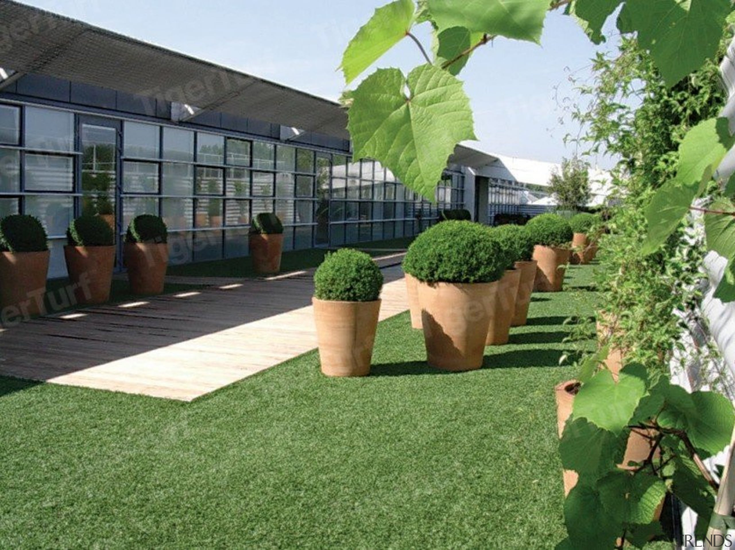 Synthetic lawn is becoming increasingly popular as an artificial turf, backyard, courtyard, flooring, garden, grass, house, landscaping, lawn, outdoor structure, plant, property, real estate, tree, yard, green
