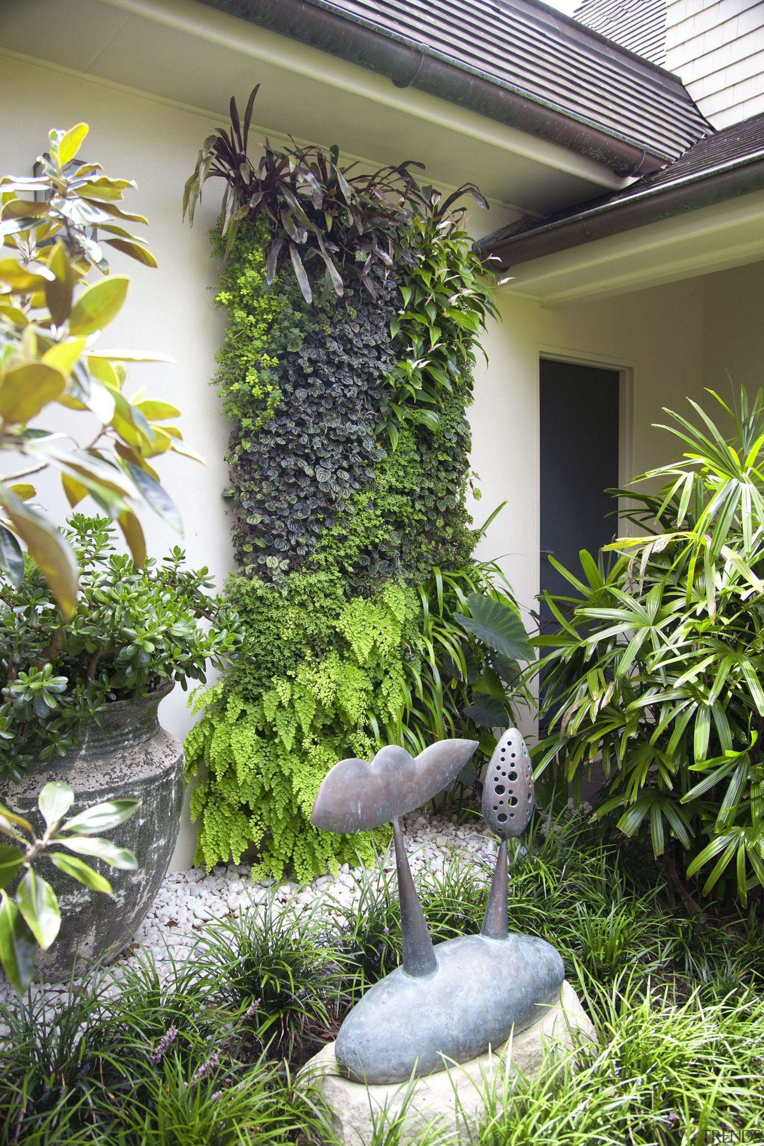 What you need to know about greening your architecture, botanical garden, botany, flowerpot, garden, grass, house, houseplant, landscaping, plant, real estate, shrub, tree, yard, brown