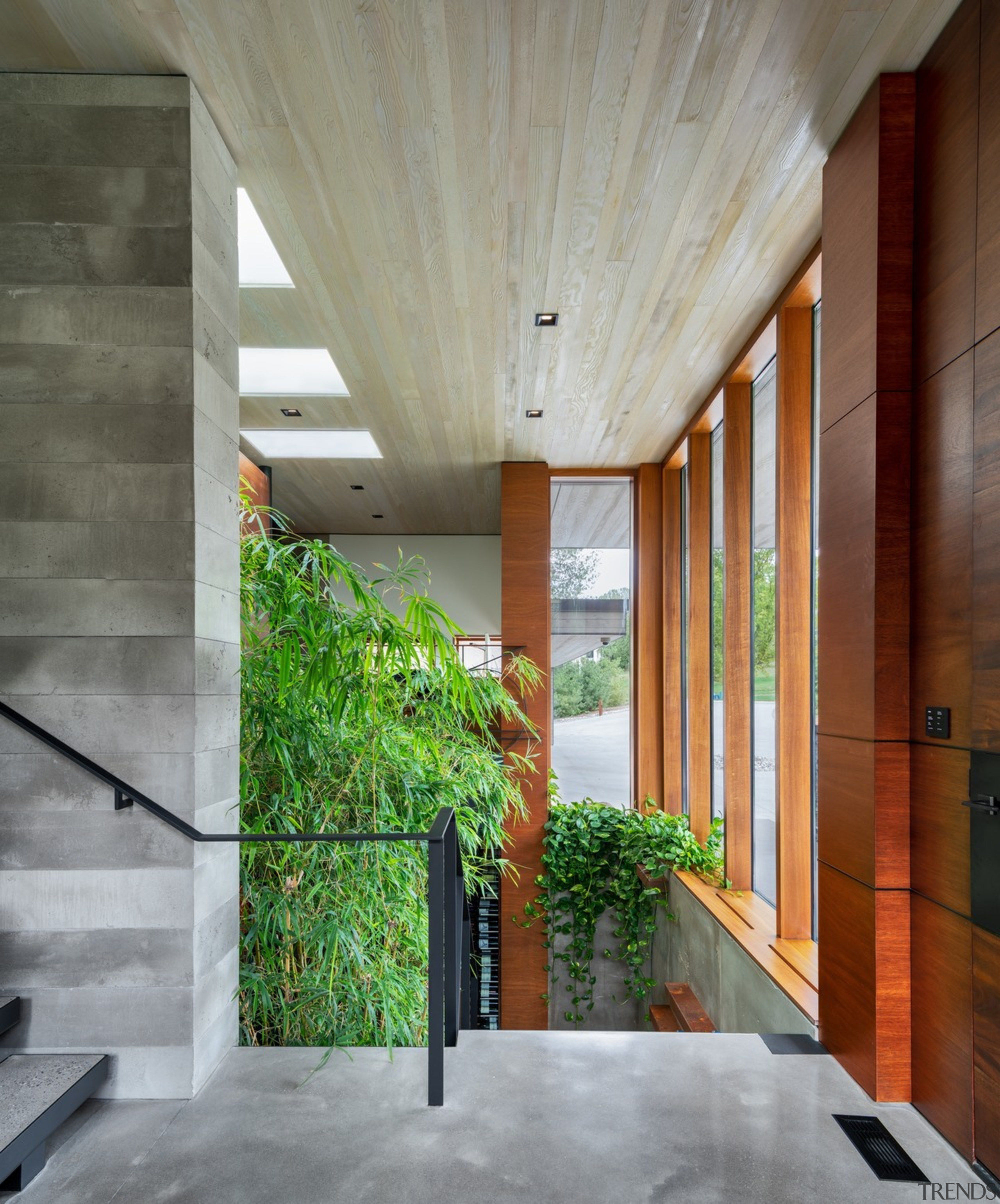 The entrance hallway looking down at the home's architecture, building, ceiling, concrete, daylighting, floor, flooring, glass, hall, hardwood, home, house, interior design, material property, property, real estate, room, tree, wall, wood, gray