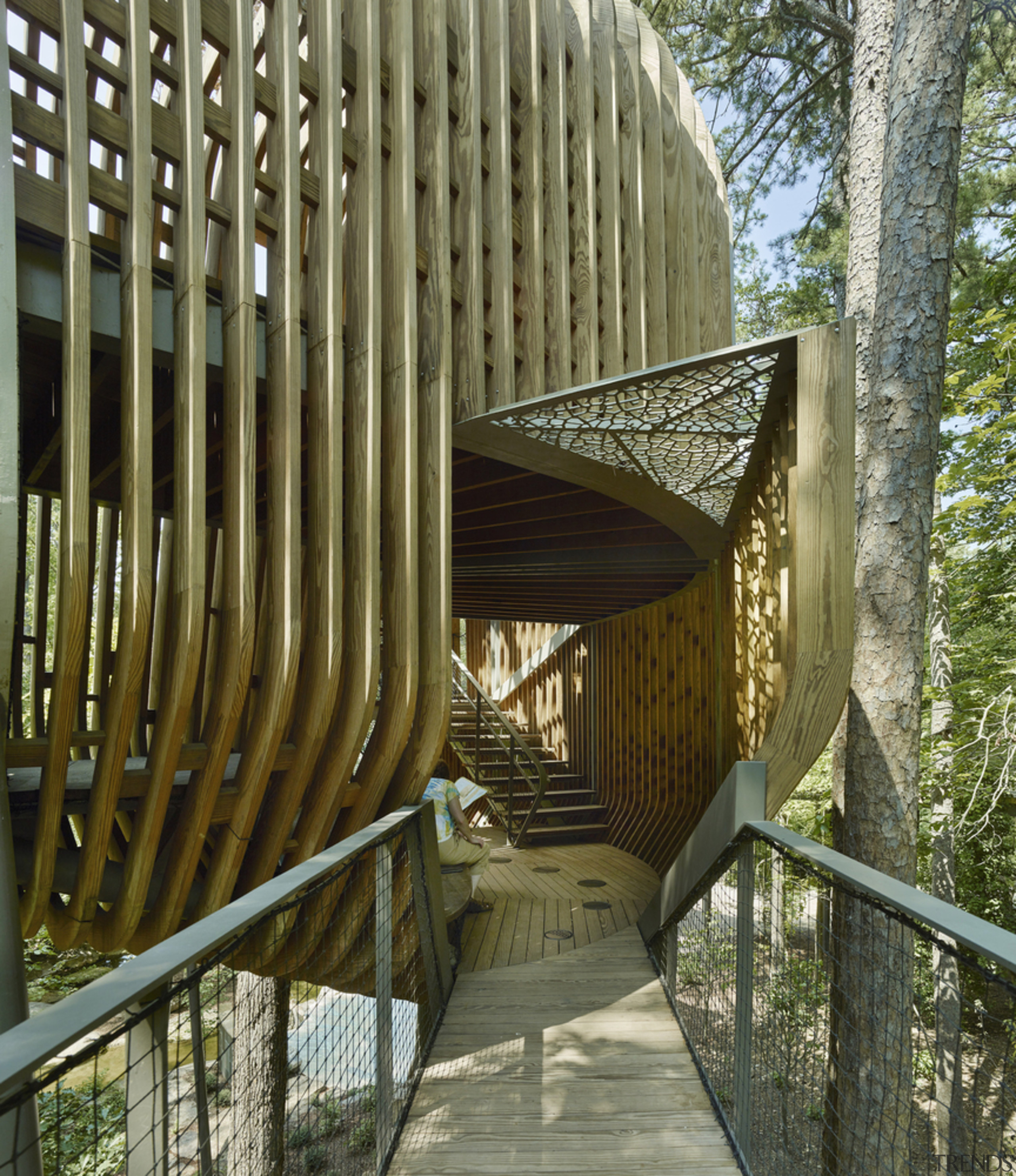 The entrance to the one-of-a-kind playground. architecture, botany, bridge, plant, tree, walkway, wood, brown