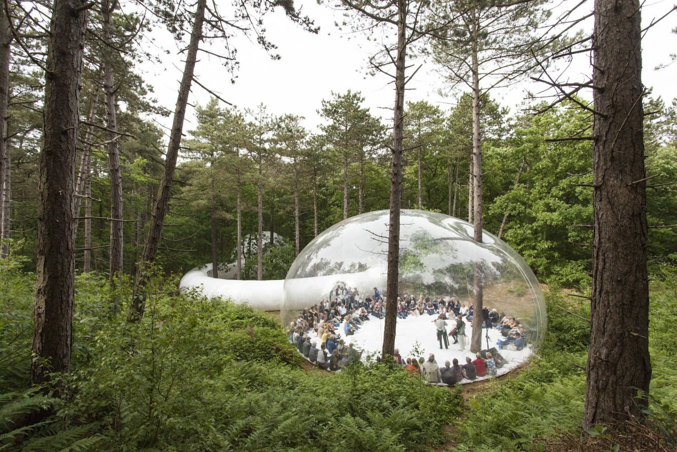 Architect: Plastique FantastiquePhotography by Marco Canevacci, Jelte biome, forest, jungle, nature reserve, tree, brown