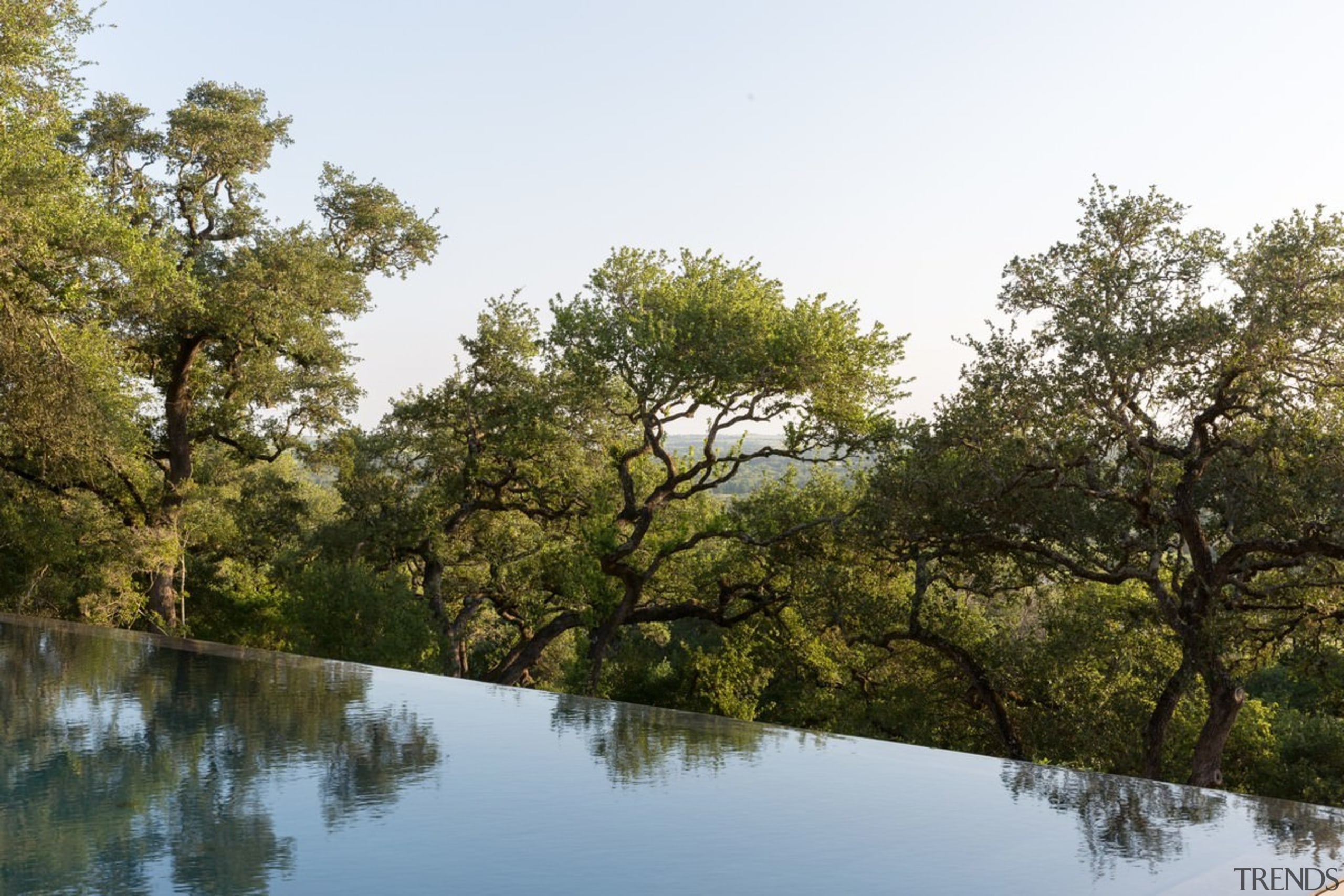 The infinity pool falls off the edge - bank, bayou, biome, branch, lake, leaf, nature, nature reserve, plant, pond, reflection, riparian forest, riparian zone, river, sky, tree, vegetation, water, waterway, wetland, brown, white