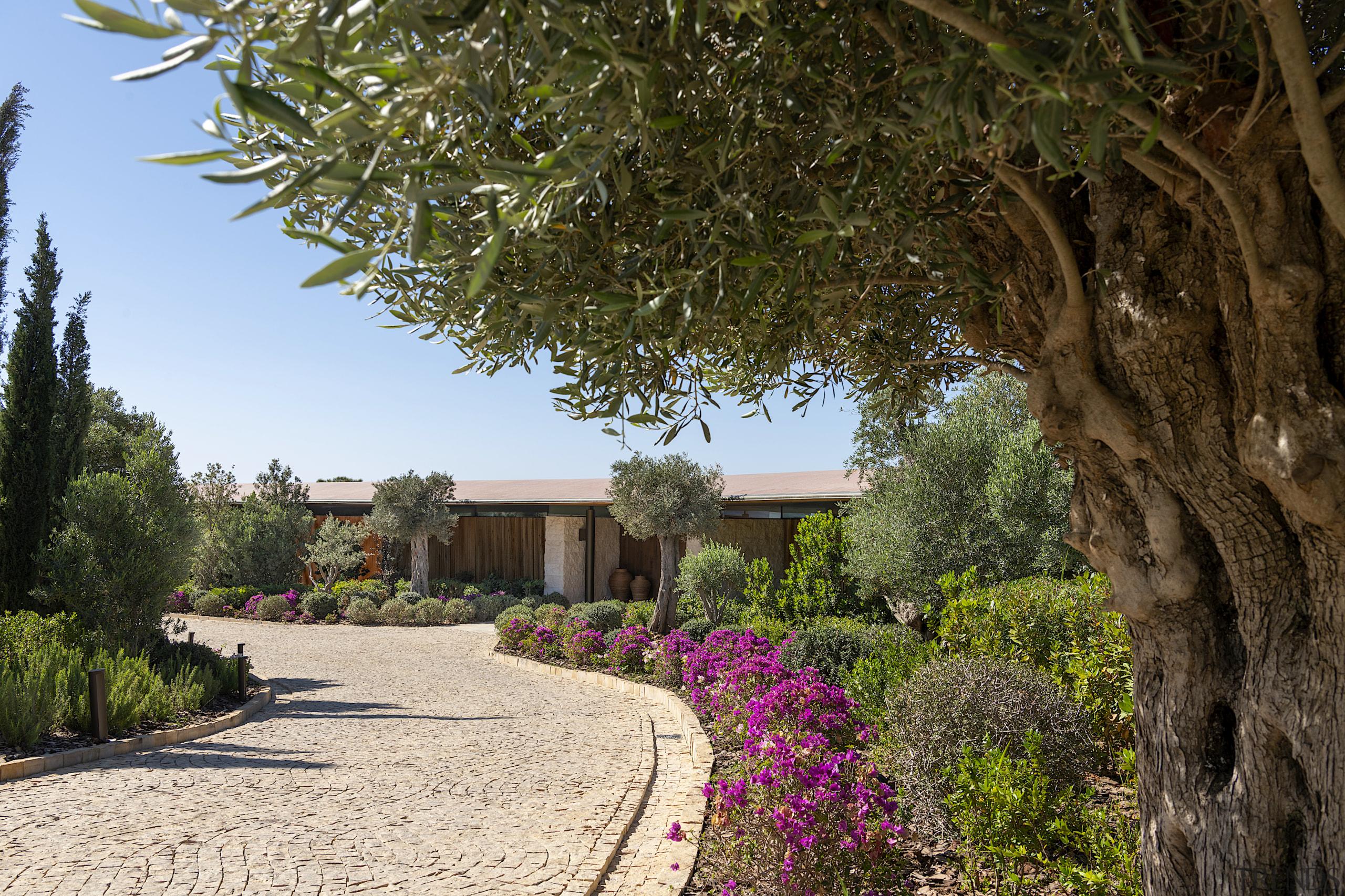 Dolunay Villa nestles within a beautiful Mediterranean garden.