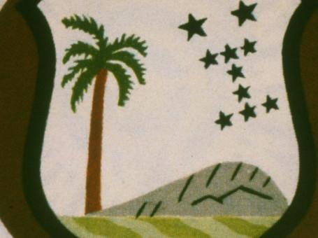 west indies badge