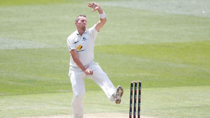 Peter Siddle Essex