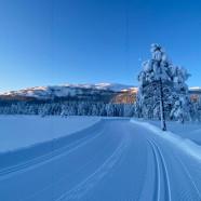 Nytt fra Vikerfjell Skiløyper julen 2019