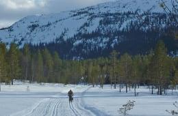 Vikerfjell Skiløyper – Sesongen 2015