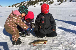 Barnas isfiskedager 25 & 26 februar 2017