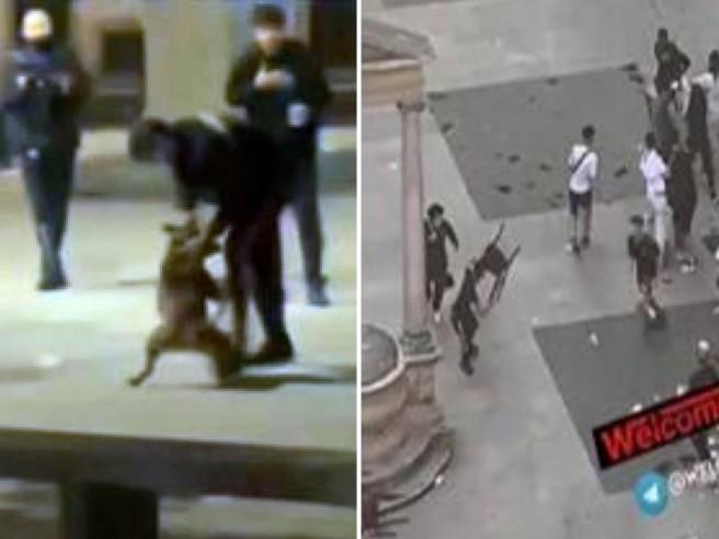 I ragazzi e le notti violente di Milano tra risse,