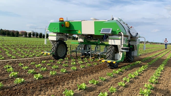 Arriva 'Dino', bio-robot che pulisce i terreni senza chimica