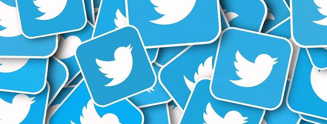 Twitter in chiaro-scuro: attesa brusca frenata nei prossimi mesi