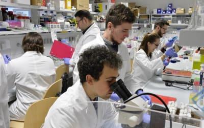Tumori: individuata l'origine del medulloblastoma