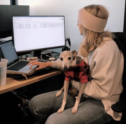 TripActions Dog