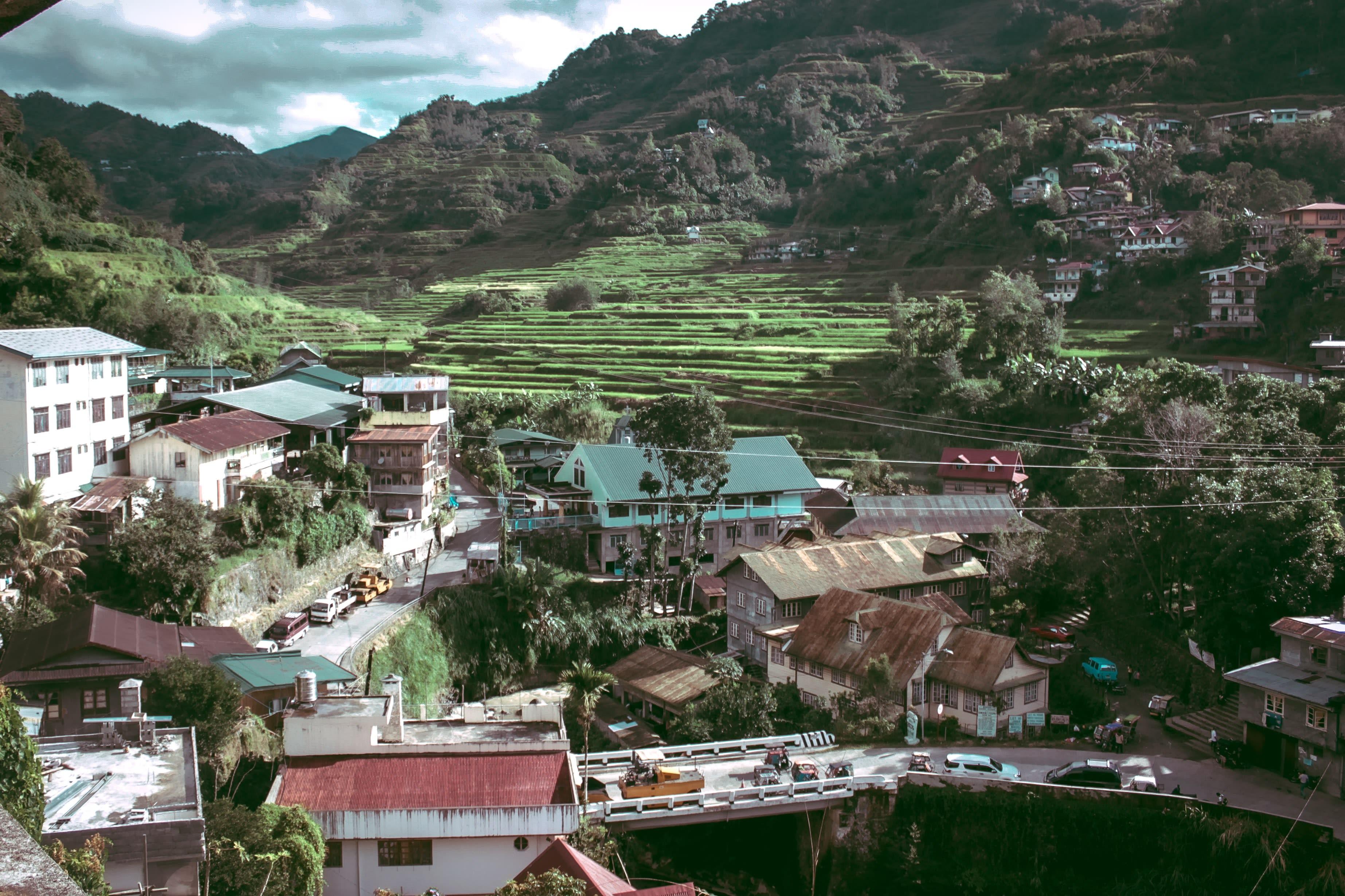 Banaue Green Terraces
