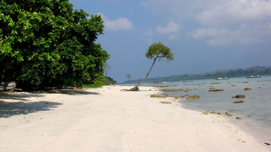 Andaman Delight  - Flights Ex Delhi / Mumbai