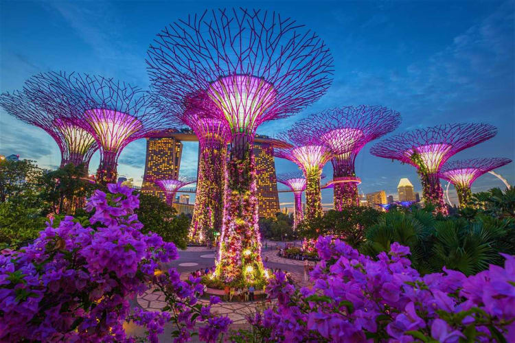 Thrilling Singapore - 4 Nights in Singapore