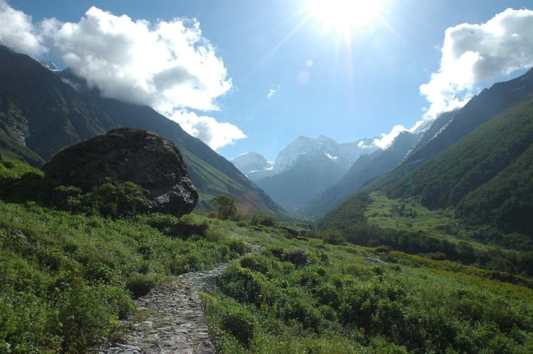 Trek to the Valley of Flowers - ex Dellhi