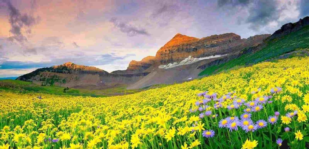 Charming Uttarakhand - Ex Delhi