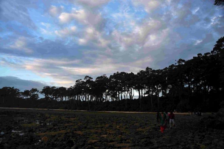 Andaman Islands - Unwind in the Lap of Luxury