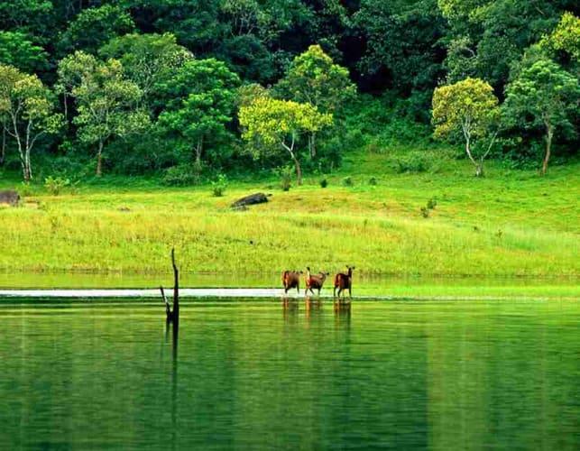 Kerala - Super Saver Holiday