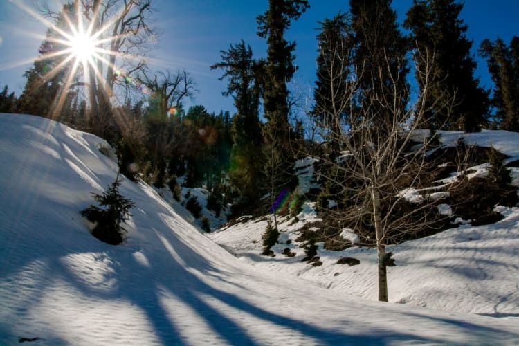 Manali Holiday - 3 Nights in Paradise With Naggar Castle
