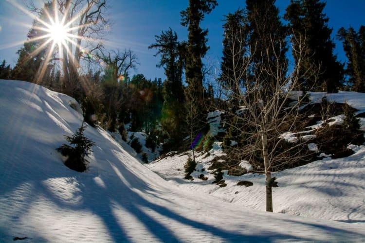 Shimla - Manali Holiday