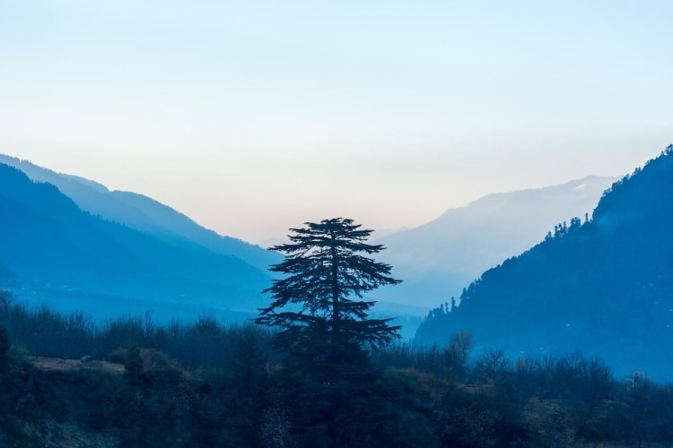 Magical Manali - 4 days Holiday Package