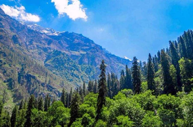 Kasol Group Trip 26th January Long Weekend Getaway - Tripshelf Quickies