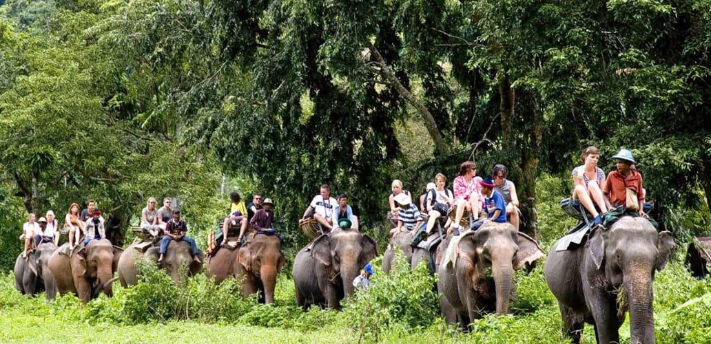 Explore Jim Corbett National Park and Nainital - Ex Delhi