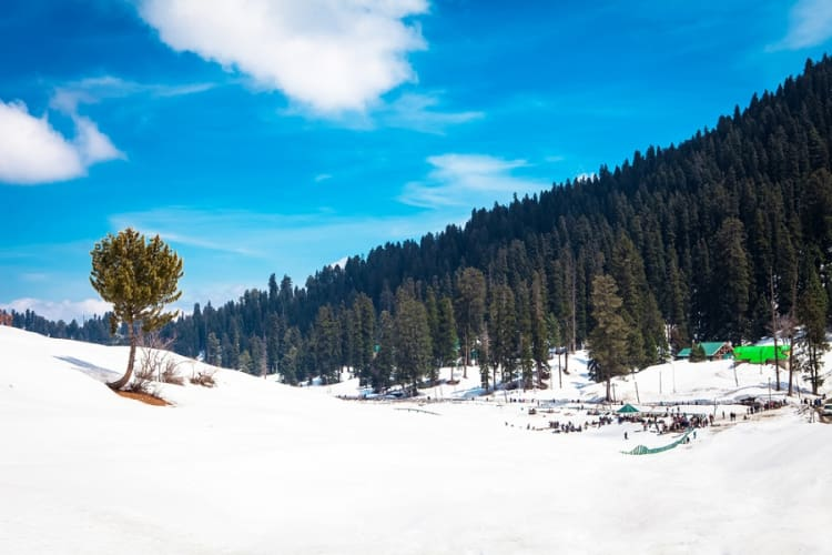 Extensive Kashmir Tour for couples