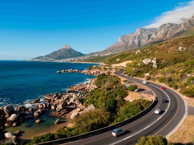 Sensational South Africa - Sea Life, Wild Life & More