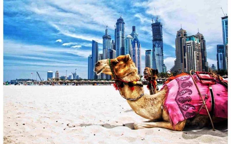 Delightful Dubai Honeymoon 4 Days Package