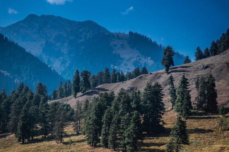 Luxury Escapes Of Kashmir